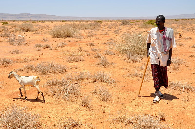Disaster Risk Reduction efforts in the Greater Horn of Africa