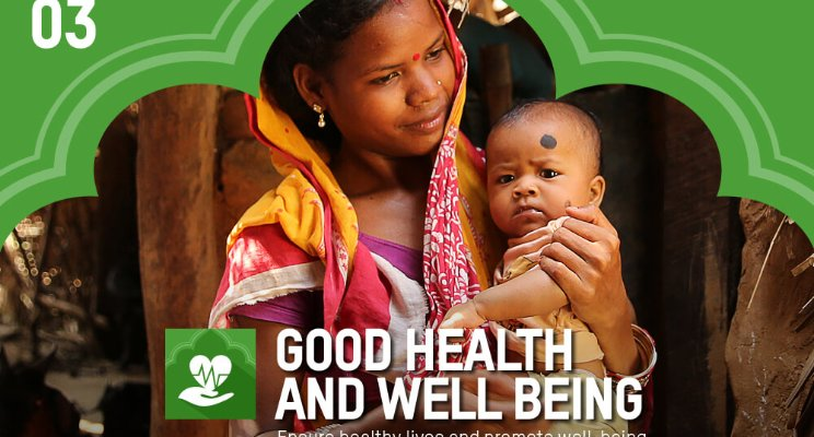 The Path to Achieving Health SDGs