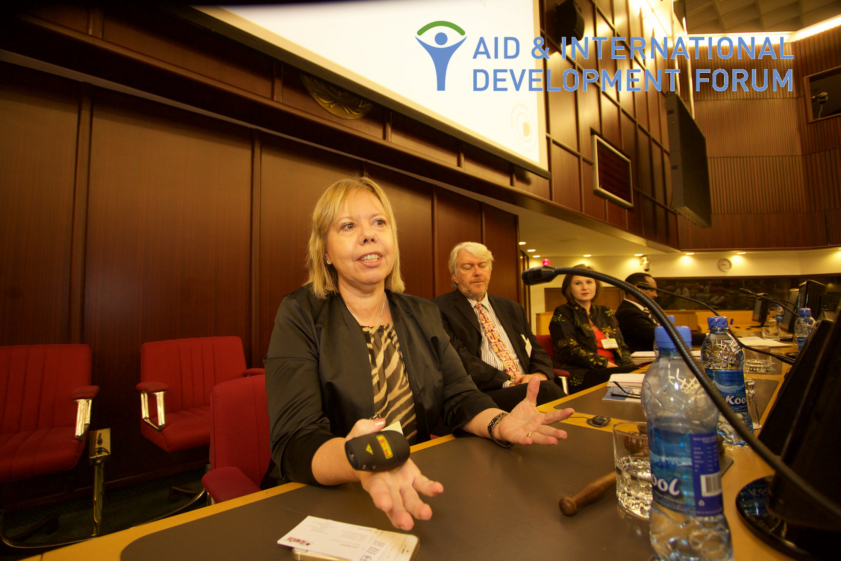 Interview with Lena Wahlhed, Director Alliance Development, HemoCue at AIDF Africa Summit 2016