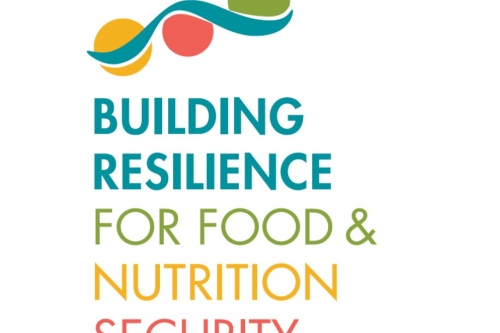 Building Resilience for Food and Nutrition Security: Highlights from the IFPRI 2020 Conference