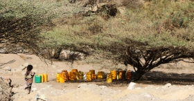 Lessons learned from the recent drought response in Ethiopia