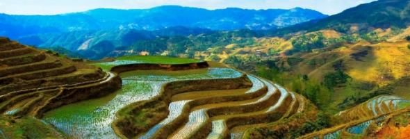 September Newsletter - Focus on Food Security