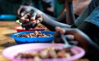 41 countries face triple threat of malnutrition, anaemia and obesity, FAO reports