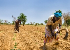 Hunger in the Sahel is a 'disaster that the world cannot continue to ignore'