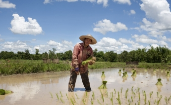 ROLE OF EMERGING COUNTRIES IN CLIMATE-SMART AGRICULTURE