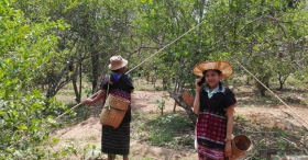 ICT in Myanmar: Creating Opportunities for Aid and Development