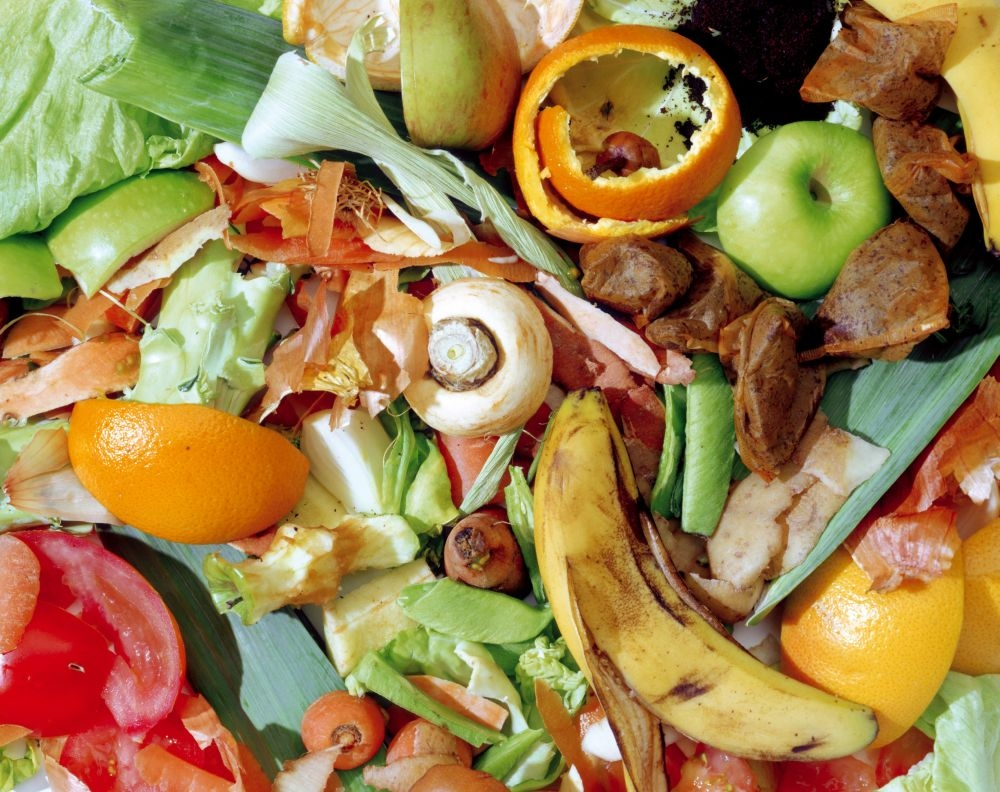 REDUCING FOOD WASTE TO HELP TACKLE CLIMATE CHANGE