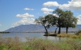 Zambia launches a new $33 million sustainable livelihoods and forest protection programme