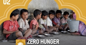Sustainable Development Goals one year on: Zero Hunger by 2030?