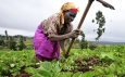 10-year Climate Smart Agriculture Implementation Framework launched in Kenya