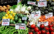 Building Resilience for Food and Nutrition Security
